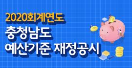 2020회계연도 충청남도 예산기준 재정공시