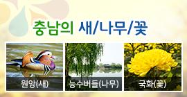 충남의 새, 나무, 꽃