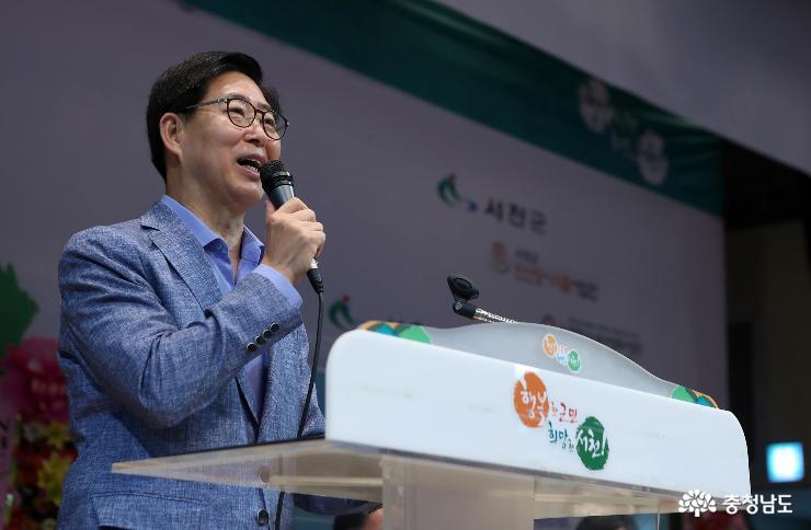 2019.08.17-대전MBC배 국제오픈태권도대회