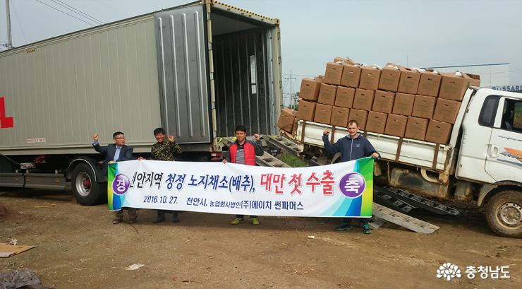 First Exported the Bare Ground Vegetables to Foreign Market