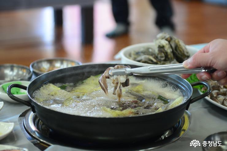 홍성성남당항새조개축제 6일 개막 사진