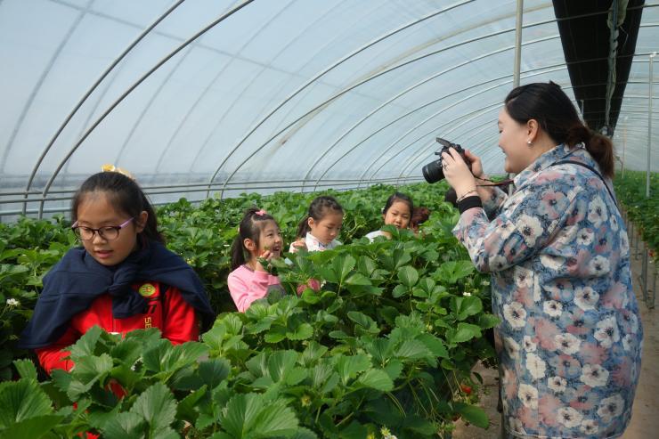 청년 농업인이 일구는 다온딸기 체험농장 17
