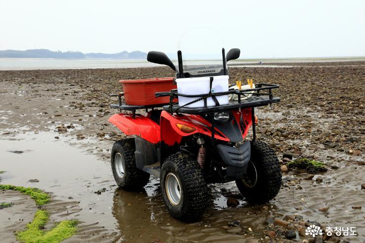 바지락을 캐기 위해 타고 온 4륜차. 해안가에서는 아주 유용한 교통수단이다.