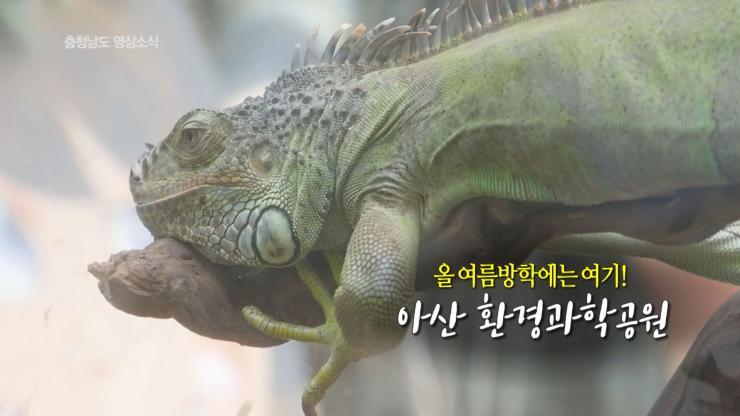 [종합]충청남도 영상소식 28회