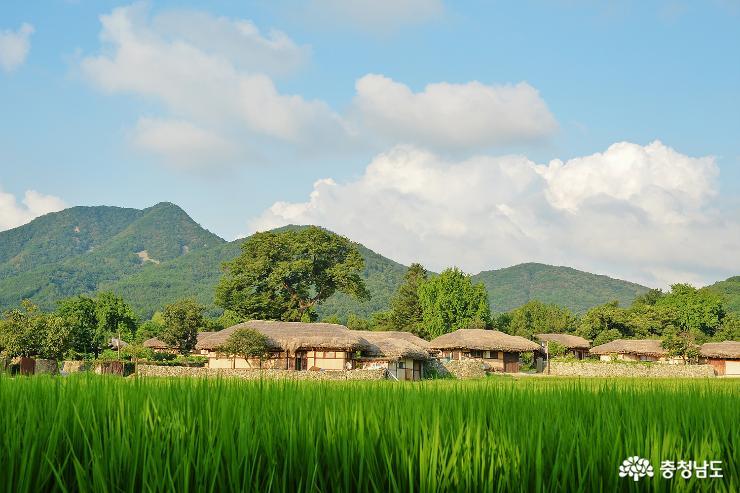 내 마음속 시골 풍경 아산 외암민속마을