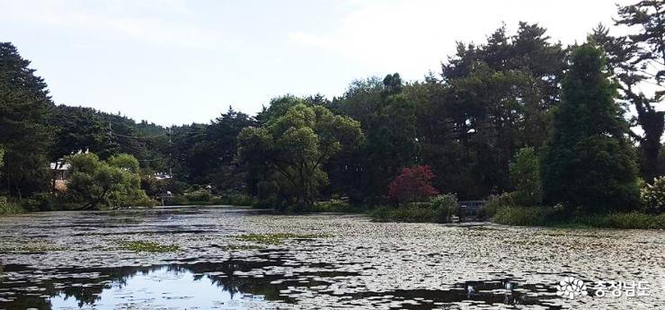 자연 품은 천리포수목원