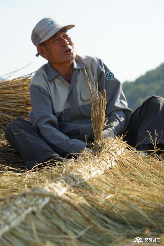 수확을 마친 들녘에서 마을 주민이 지붕에 얹을 이엉을 엮고 있다