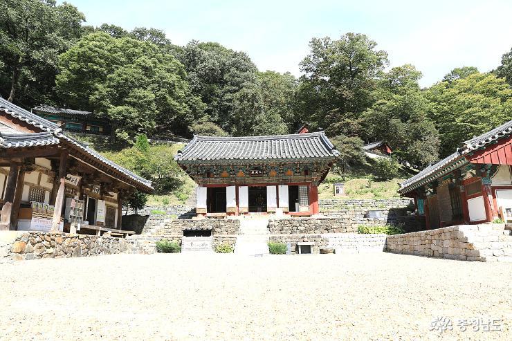 장곡사에서 격동의 한국 현대사를 다 볼수 있다 4