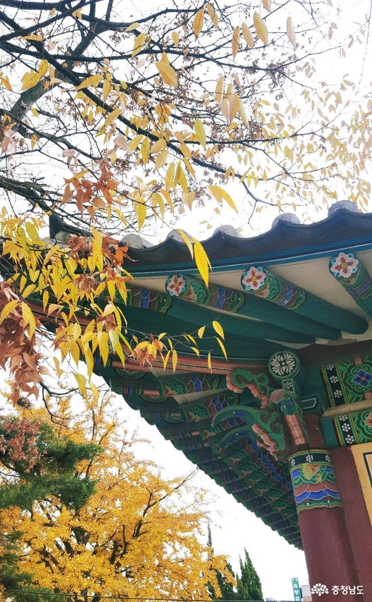 조선시대 게스트 하우스 '서산객사'