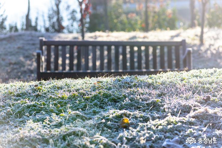 아산 신정호 겨울로 가는 길목에서 사진