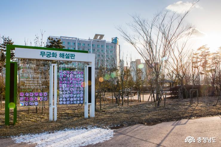 충남도청내 시민을 위한 행복 나눔의 숲 2
