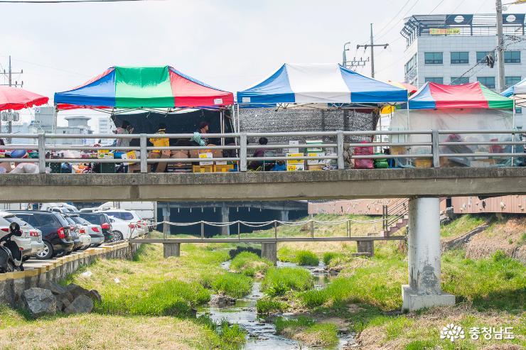 봄처럼 활력을 되찾은 홍성시장