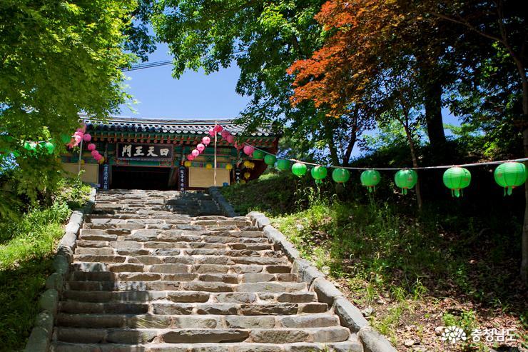 부처님 오신날  앞둔 계룡산 신원사 2