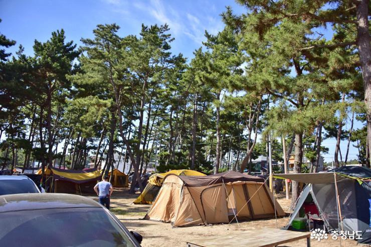 서해안 최고의 캠핑과 갯벌체험, 몽산포해수욕장
