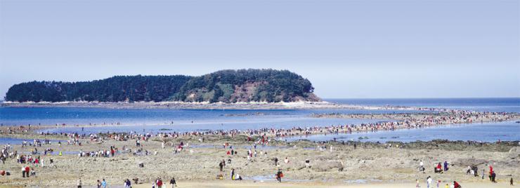 여름휴가 여기 어때? 충남 바다 기억海!