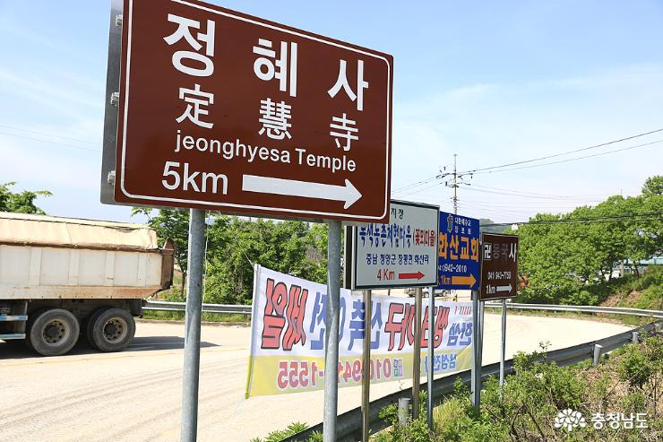 충남 유형문화재 오른 청양 정혜사 목조석가여래삼불좌상
