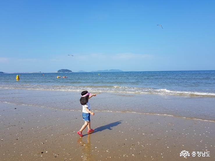 가는 여름, 마지막 물놀이의 즐거움