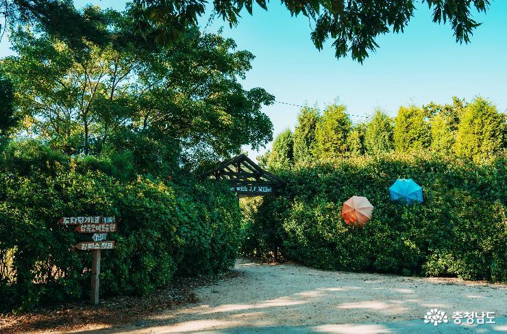 인생 사진 찍자, 청산수목원