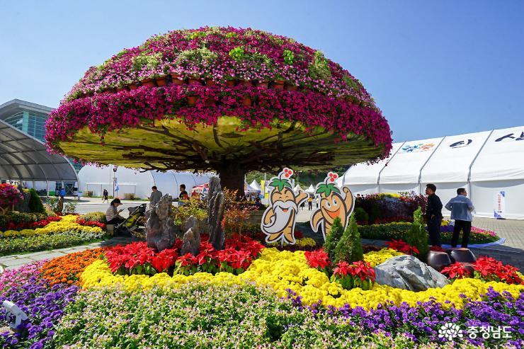 건강한 축제, 10월은 금산인삼축제로
