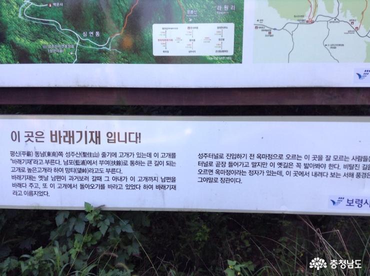 보령 새명소 성주산 '남포오석 테마거리'