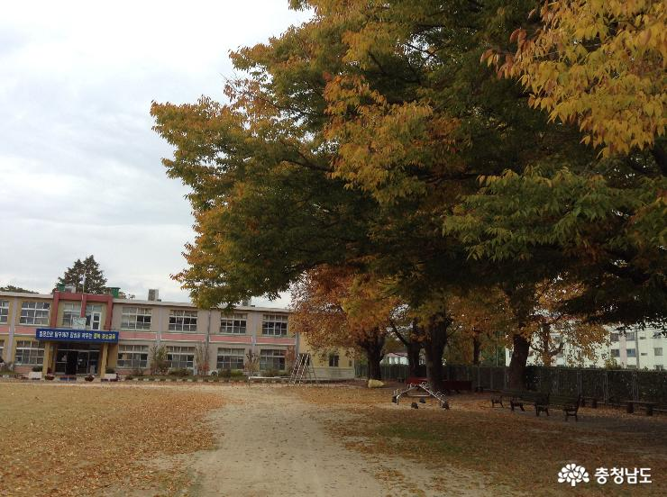 꿈 푸른 둥지 보령 청소초등학교 이야기