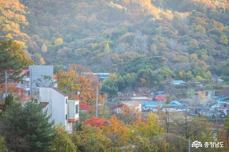 계룡산 기슭의 '가을 수채화' 사진