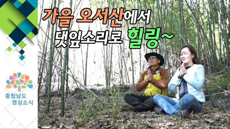 [VCR] 가을 오서산에서 댓잎소리로 힐링~