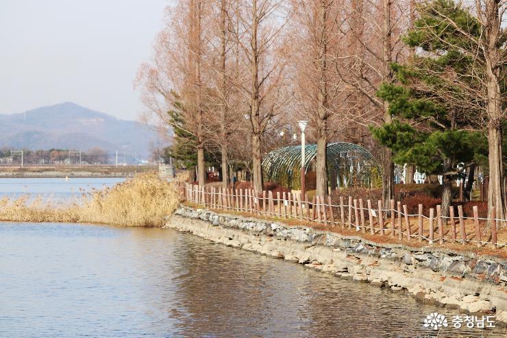 걷는 즐거움이 있는 신정호 호수공원