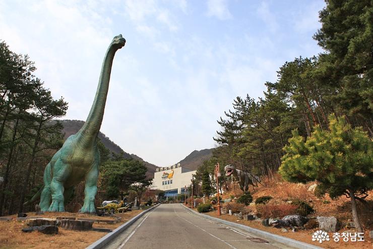 공주 가볼만한곳, 계룡산자연사박물관