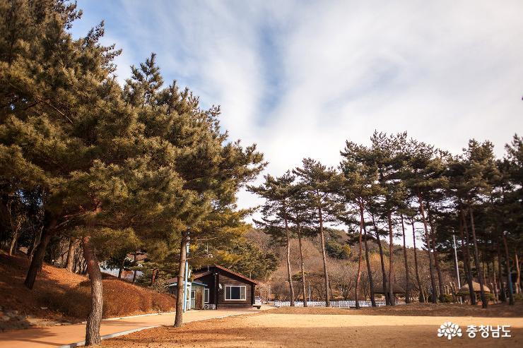 겨울 수목원을 걷다. 사진