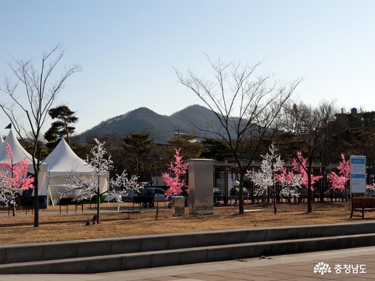 축제장 주변 경관