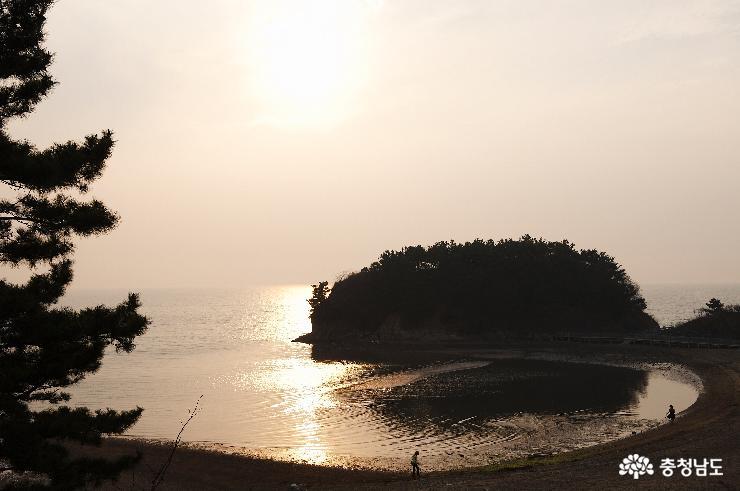 서해안 '뷰티관광 코스' 개발로 중국인까지 사로잡는다!