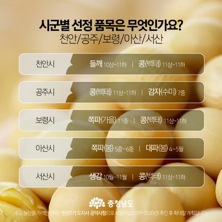 시군별 선정 품목 - 천안, 공주, 보령, 아산, 서산