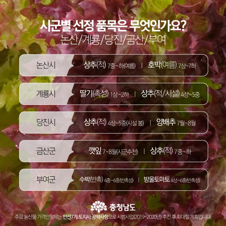 시군별 선정 품목 - 논산, 계룡, 당진, 금산, 부여