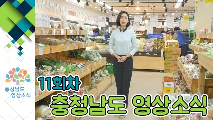 [종합] 충청남도 영상소식 11회차