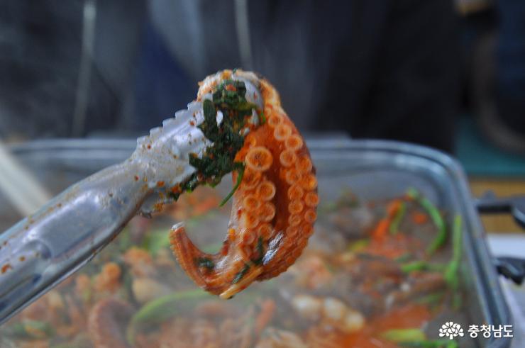 몸도 마음도 즐거운 서천 동백꽃·주꾸미 축제