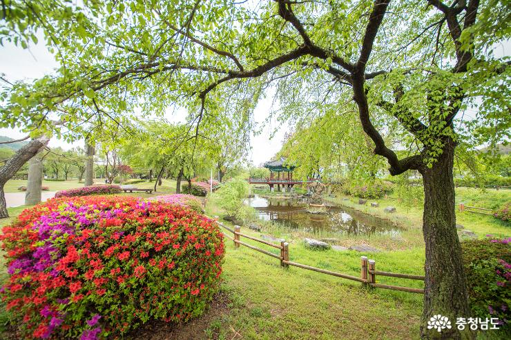 [사람세상]천안삼거리의 싱그러운 봄 풍경
