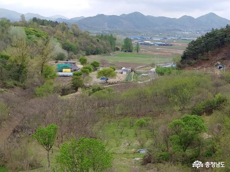 논개 소나무가 있는 요룡리 마을