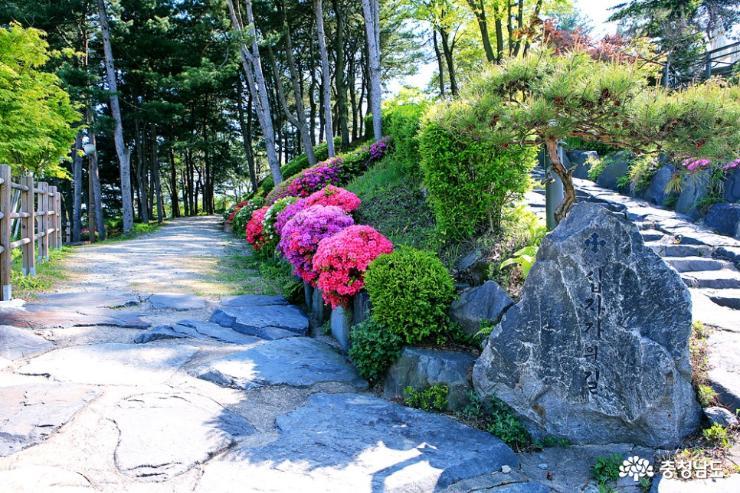 공주 5월 산책하기 좋은 곳, 천주교 황새바위 순례성지 4