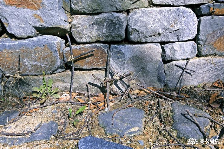 공주 5월 산책하기 좋은 곳, 천주교 황새바위 순례성지 21