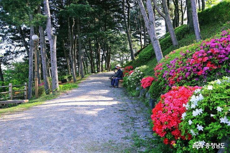 공주 5월 산책하기 좋은 곳, 천주교 황새바위 순례성지 25