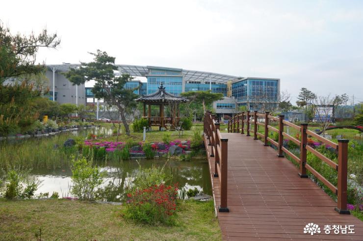 알록달록 봄꽃으로 물든 논산시민공원 5