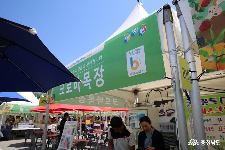 홍성에서 유명한 것은 무엇일까요?