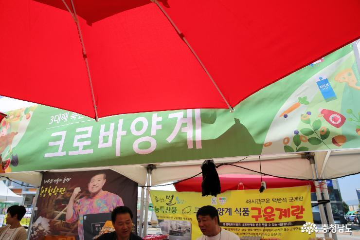 홍성에서 유명한 것은 무엇일까요? 9