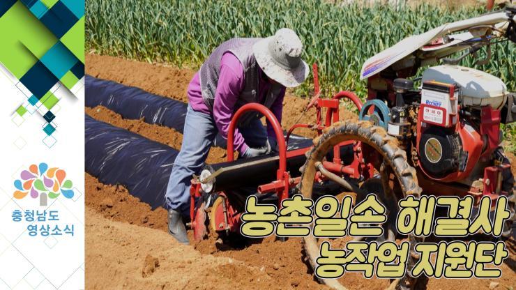 [NEWS]농촌일손 해결사 / 농작업 지원단