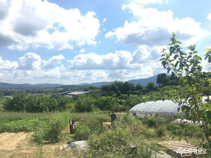 발달장애청소년을 위한 교육농장, 장애와 함께 일하는 돌봄농장