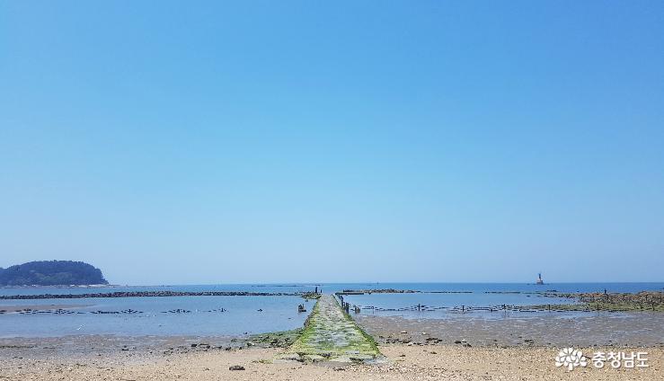 여름 피서는 무창포해수욕장 2