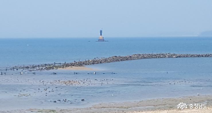 여름 피서는 무창포해수욕장 7