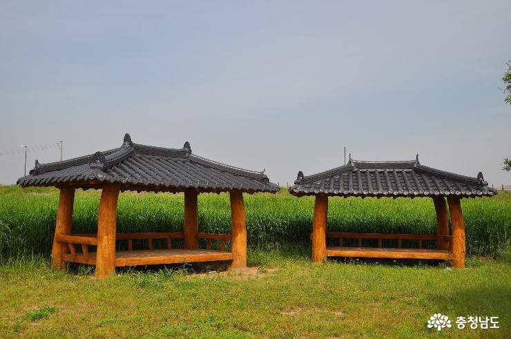 신성리 갈대밭 쉼터