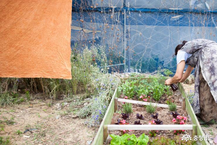 도시와 농업이 상생하는 새로운 길, 도시농업이 해결!